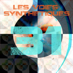 Les Voies Synthétiques N° 31