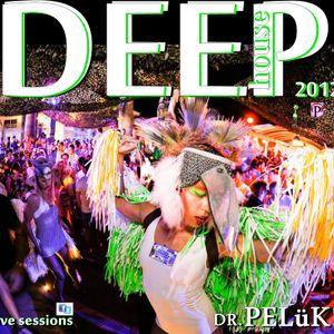 DR. PELüK set deep house 2012 jaen 3.7.2012