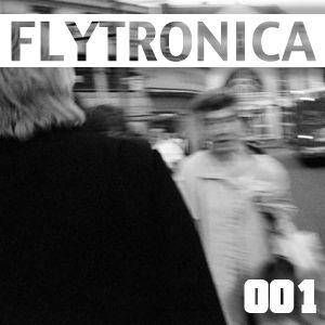 FLYTRONICA 001