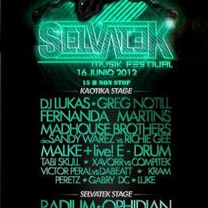 DJ Lukas - Live @ Selvatek Festival, La Selva del Camp, Tarragona, Espanha (16.06.2012)