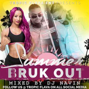 Summer Bruk Out Mixed By DJ Navin