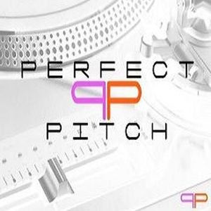 The Perfect Pitch Show With Vincent Vega & DJ toke, 21.11.15