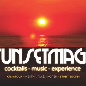 SoulFools Vol. 2 for the sunsetmagic nights by funkastik live set