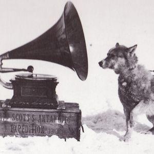 ...TOI, TU CREUSES - Une émission qui a du chien