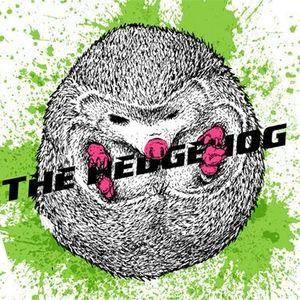 """ITK show #1 guest mix - Mimi The Hedgehog """"Unperfect Effect Live-Set"""""""