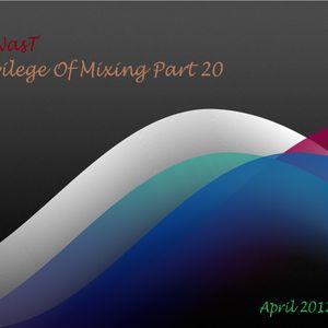 Privilege Of Mixing - Part 20