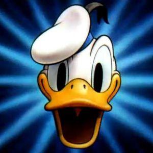 Donalds Rache