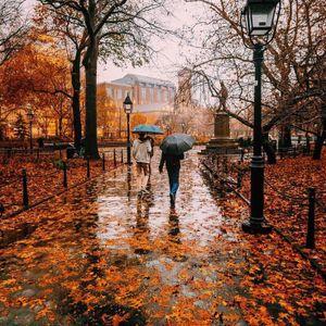 Autumn Rain !!!