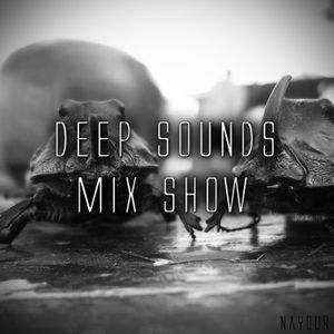 Deep Sounds Mix Show 08 @ homeradio.hu (2013-11-06)