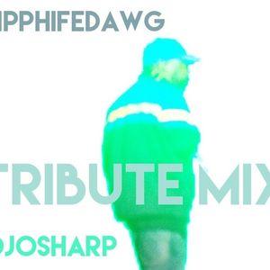 PHIFE DAWG TRIBUTE @DJOSHARP #RIP 3 22 16