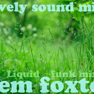 nem foxter-Lovely sound mix