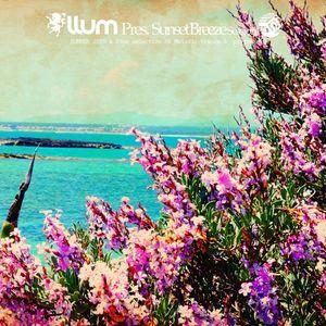 Sunset Breeze Session Summer 2015 - Mix by LLUM
