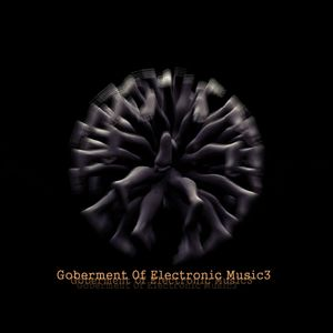 Goberment Of Electronic Music3
