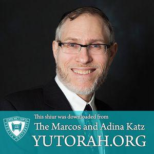 Sanhedrin #70: Tosfos Dan afilu yachidi