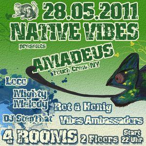 Native Vibes Promo Mix