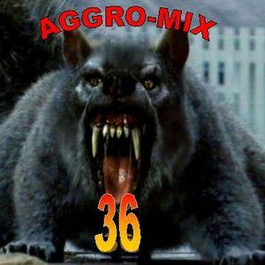 Aggro-Mix 36: Industrial, Power Noise, Dark Electro, Harsh EBM, Rhythmic Noise, Aggrotech, Cyber