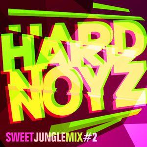 DJ Hardnoyz - Sweet Oldskool Jungle (Pt.2)