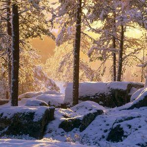 GoeMan- Communicate Winter Sunshine