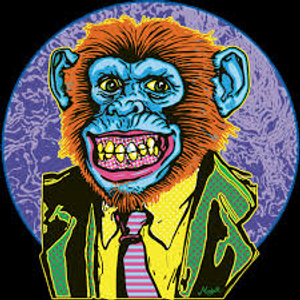 Doin' Tha' Monkey