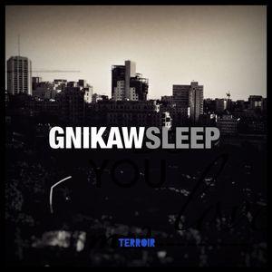 Waking Sleep
