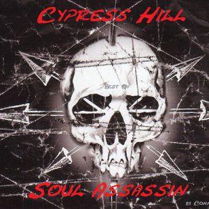 Best of Cypress Hill The Soul AssAssins