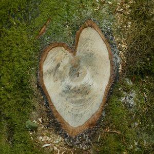 LP - Heart Boom