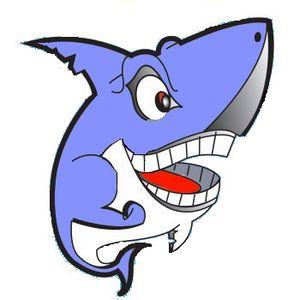 Shark At The Disco