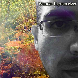 Triptonceiver [Triplag Music] 2010