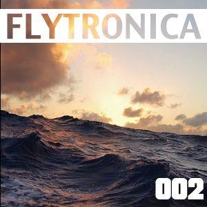 FLYTRONICA 002