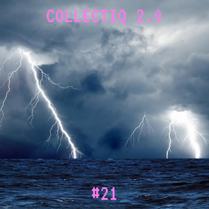 Collectiq 2.0 #21: Frizzle Fry