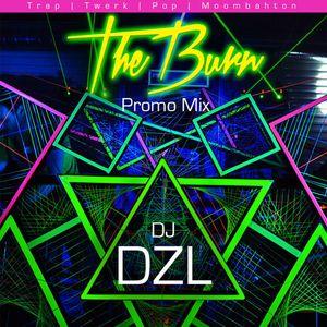 DJ Dzl - TheBurn Promo Mix [Trap, Twerk, Pop, Moombahton]