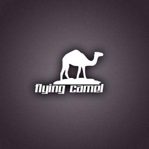 Flying Camel - Deep Promo Bug ( March 2013 )