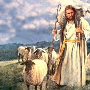 Palabra de vida: IV Domingo de Pascua: Sólo hay un buen pastor
