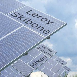 Leroy Skibone Classic House Mix - 05/08/2011