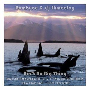 Bombyce & dj ShmeeJay - Ain't No Big Thing - 2017-04-27