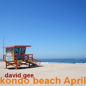 Kondo Beach April 2012