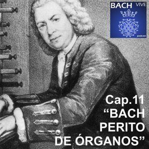 11 Bach, perito de órganos