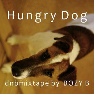 DNB mixtape by BOZY B - Hungry Dog