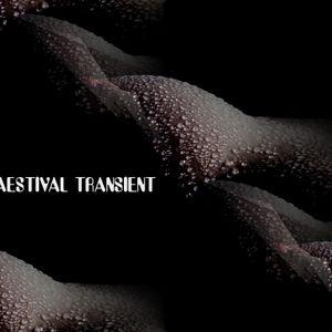 Aestival Transient