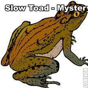 slow toad - mystery