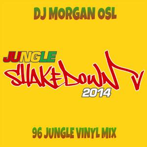DJ MORGAN OSL  96 JUNGLE VINYL SELECTION #JUNGLESHAKEDOWN2014