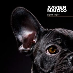 Xavier Naidoo Mix 9 (Live 2014)