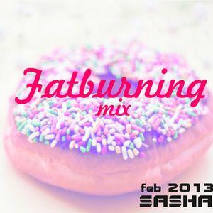 FatBurning mix