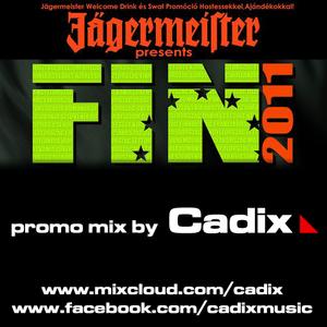 FIN 2011 promo