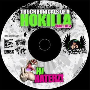 DJ HOKILLA - HI HATERZ (2009 mixtape)
