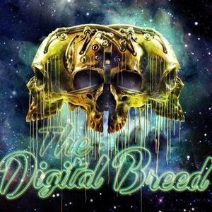 The Digital Breed´s- The Down Low Ep. 5