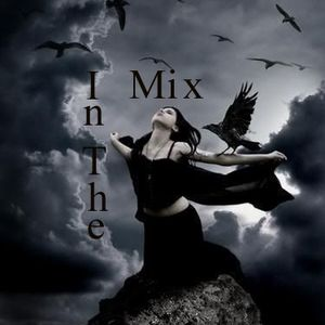 In The Mix 49