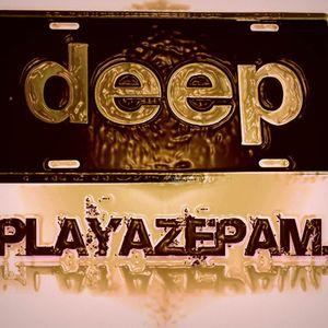 Playazepam - Autonomic 2014