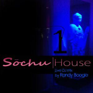 RandyBoogie - Sochu House Vol 1
