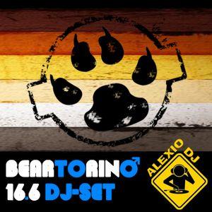 Bear Torino 16.6